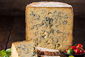 Keeping it Mouldy: A Faculty Lecture with Mike's Fancy Cheese