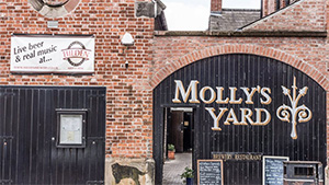 Molly's Yard (near Lyric Theatre)